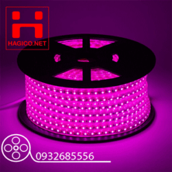 LED-DAY-DUHAL-HONG-PINK